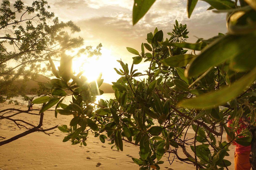 the-westin-playa-conchal-costa-rica-sunset