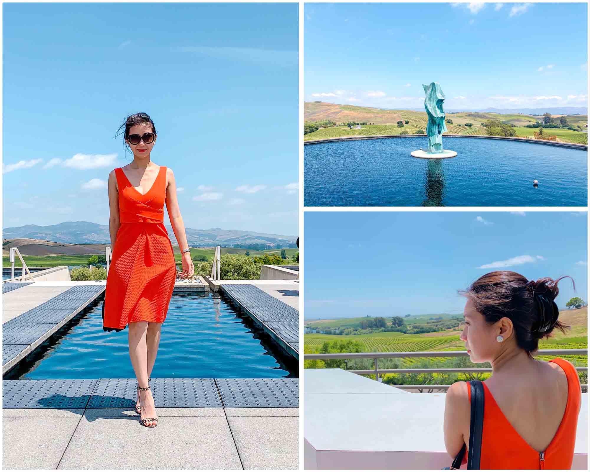 beautiful-view-at-artesa-vineyard-napa-valley