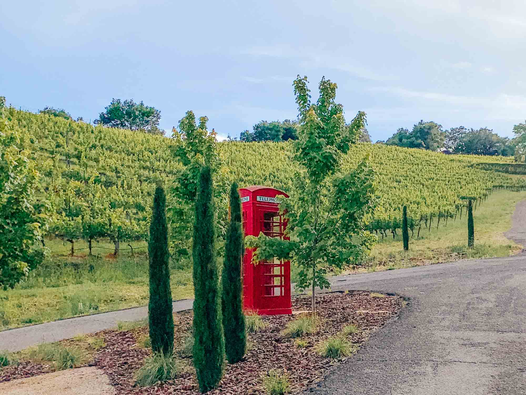 newton-vineyard-red-telephone-booth